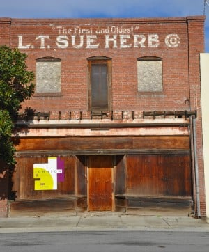 LT Sue Building