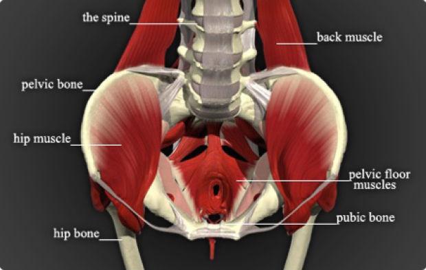 Если слабые мышцы влагалища