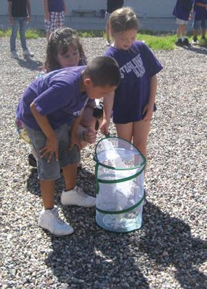 Starline 2nd graders learn life cycle, wave goodbye to butterflies