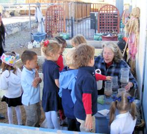 Master Gardeners teach youth about planting