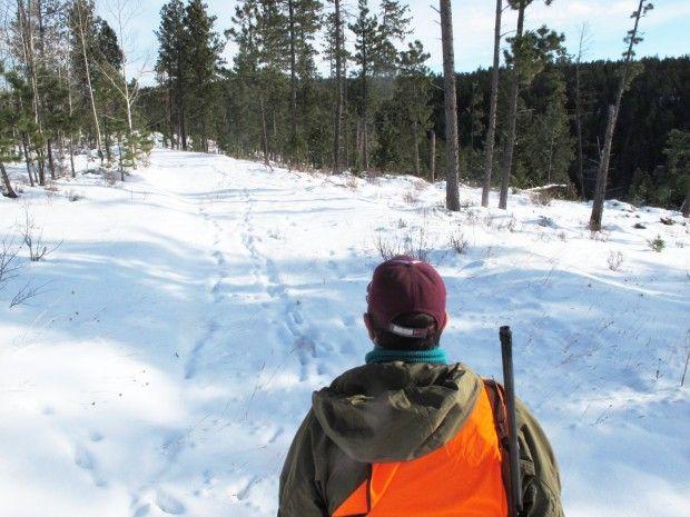 Bill proposes having council study raising hunting for California fishing license fee