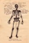 12 Brittle Bones Typewriter Poem 12