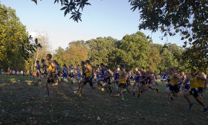 PHOTOS: Runners compete at Okaw Valley Cross Country Meet