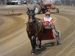 Photos: Harness racing at Logan Fair