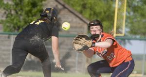 PHOTOS: Tuscola vs Pana softball