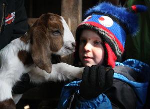 PHOTOS: Moultrie County Farm Bureau Farm Tours