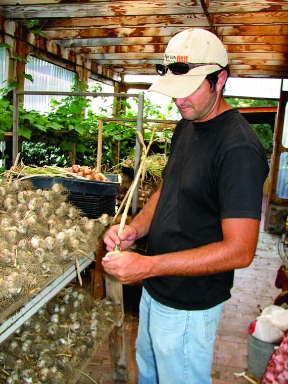 Fall bulbs: garlic
