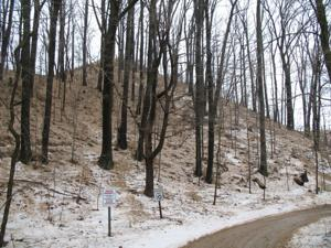 Moving dune undermines hope for Syndicate Park