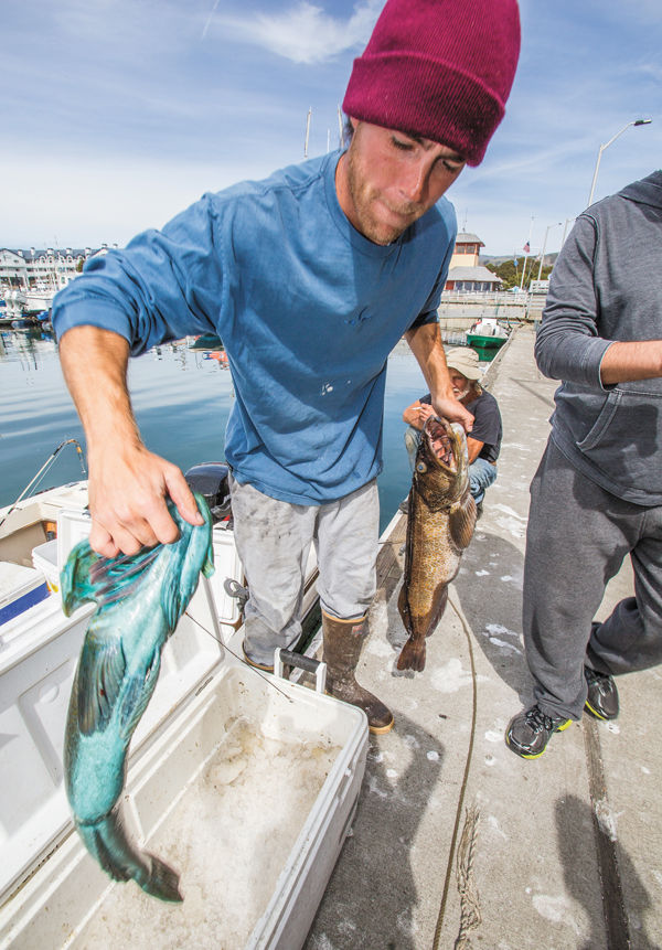 Fishfest local news stories for Coastside fishing club