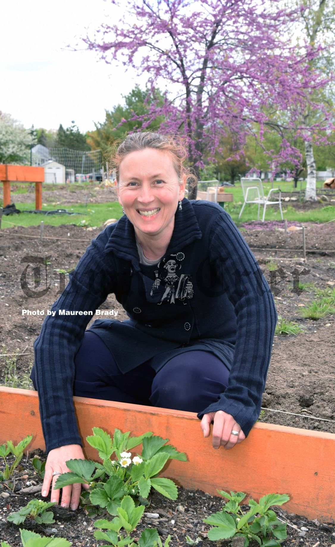 Community garden expanded and upgraded | News ... - photo#5