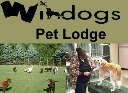 Windogs Pet Lodge
