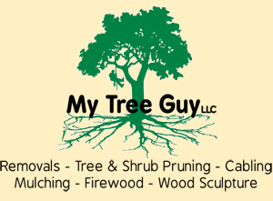 My Tree Guy LLC