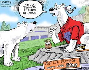 Hands on Wisconsin: New polar bears adjust to Madison