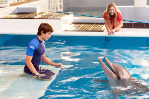 'Dolphin Tale 2' is a warmly immersive adventure