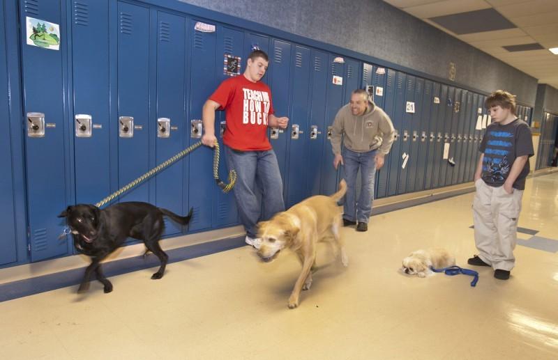 Service Dog Training Schools In Wisconsin