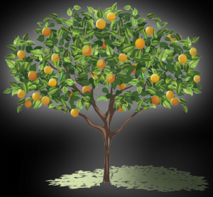 Grass Roots: Nuts about fruit trees? Get clicking for ...