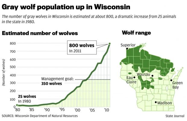 Momentum Building For State Wolf Hunt  Wsj