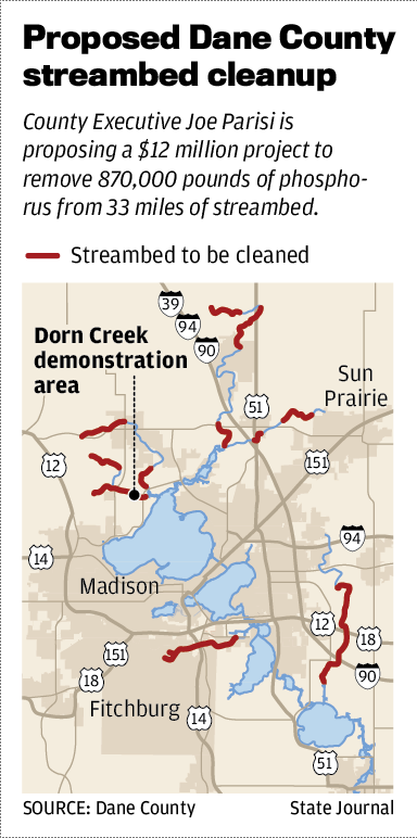 Proposed Dane County streambed cleanup