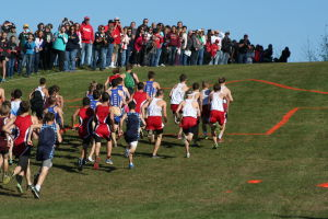 Photos: Fun on the farm at WIAA Div. 3 cross country sectional