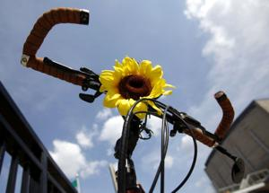 Photos: Bikes can be more than just for transportation