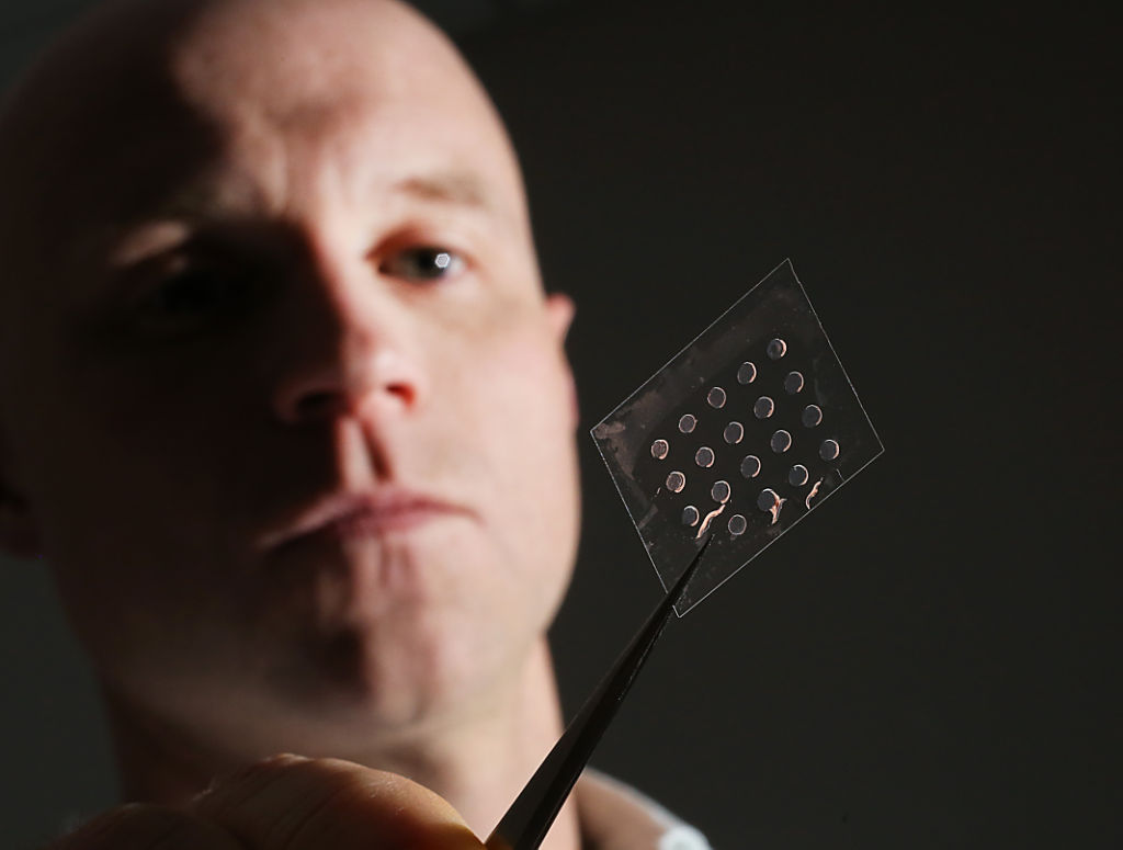 Tissue Chips Could Replace Animal Studies Uw Madison