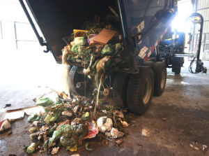 Madison to stop pilot organic waste collection program