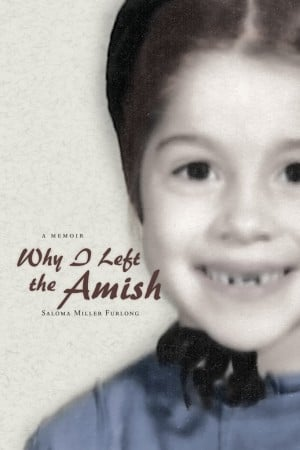 Journal Articles On The Amish Culture