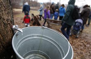 Photos: Maple Syrup Fest
