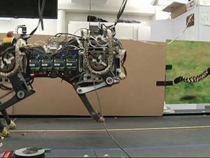 MIT's Cheetah Robot Runs, Leaps and Inspires
