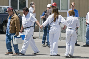 <p>Greg Kreller/IPT An Amalgamated Sugar Co. employee holds the hand of another employee as the factory workers leave for the day after a male employee died in an accidentat the Nampa sugar beet factory. Friday, May 15, 2009</p>