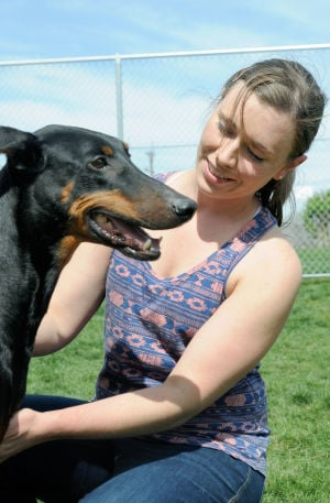 <p>Laura Shoemaker, of Nampa, looks to adopt Eva, a doberman pinscher at the Canyon County Animal Shelter Thursday in Caldwell. Thursday, April 17, 2014 Adam Eschbach/IPT</p>
