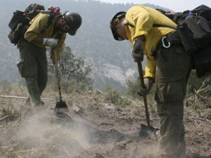 New Mexico blaze will test forest management - Record New Mexico blaze ...