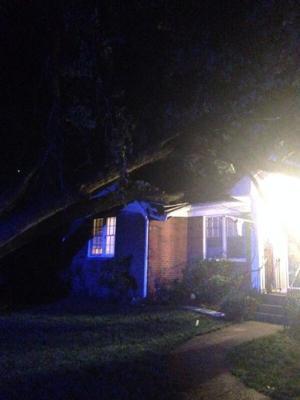 Tree into house near Prince William fairgrounds