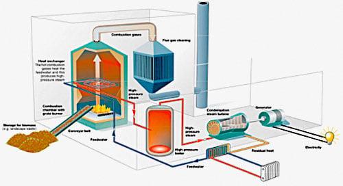 Biomass Power building biomass power