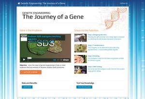 The Journey of a Gene