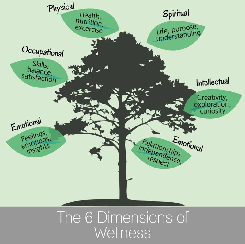 six dimensions of health by donatelle Associate level material six dimensions of health worksheet part 1 for each of the following six dimensions of health, list at least one.