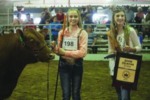 Joyce has Grand Champion Steer; Schauer has Reserve Grand Champion