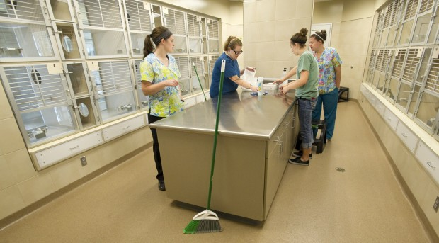 A Look Inside The Capital Humane Society S New Home