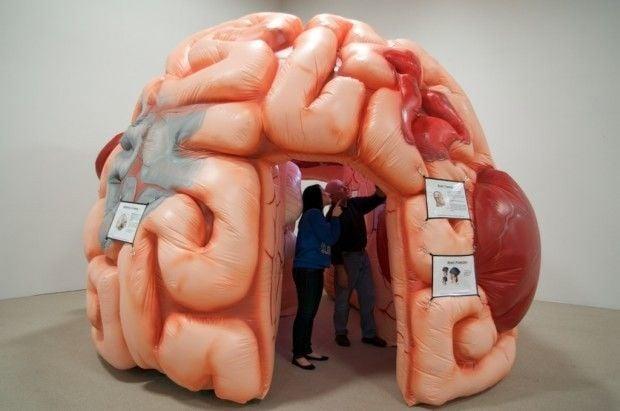 Exhibit Invites People To Take Journey Into Giant Brain