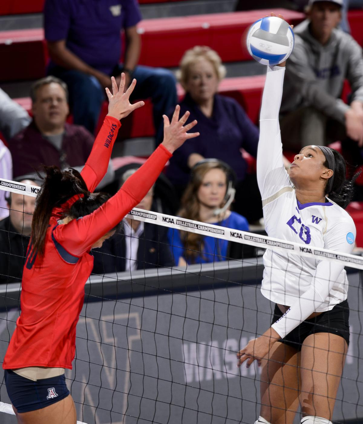 Kittens Lincoln Ne: Lincoln Regional: Huskies Sweep Cats To Set Up Clash With