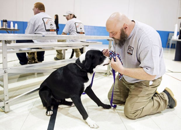 Service Dog Training Lincoln Ne