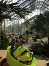 Homefront: Sneak peek at Lauritzen's new Conservatory