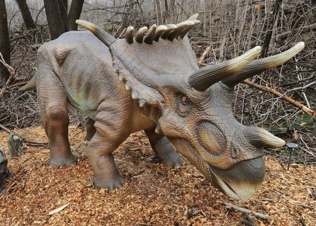 Photos Dinosaurs Alive At Omaha Zoo Gallery