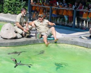 Zoo will celebrate 50 years with star-studded free arena event