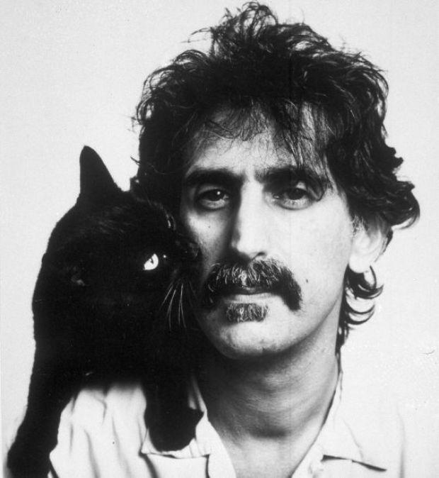 Dweezil Zappa Keeping Father Frank S Music Alive Ground Zero