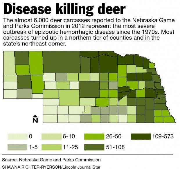 Deer Population Reeling From Disease Outbreak