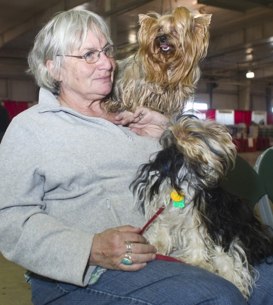 Dogs Have Their Day At Weekend Expo Local Journalstar Com