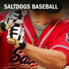 Dog Dish: Saltdogs falter in the ninth