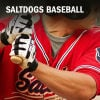 Dog Dish: Blasters run past Saltdogs 6-4
