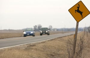 Collisions with deer less likely in Nebraska, State Farm says